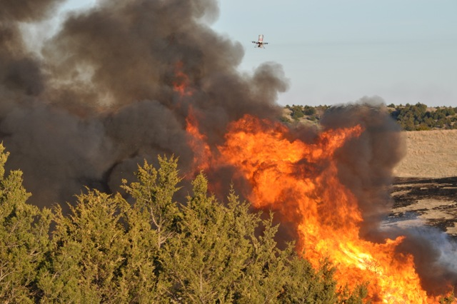 Unmanned Aerial System for Firefighting